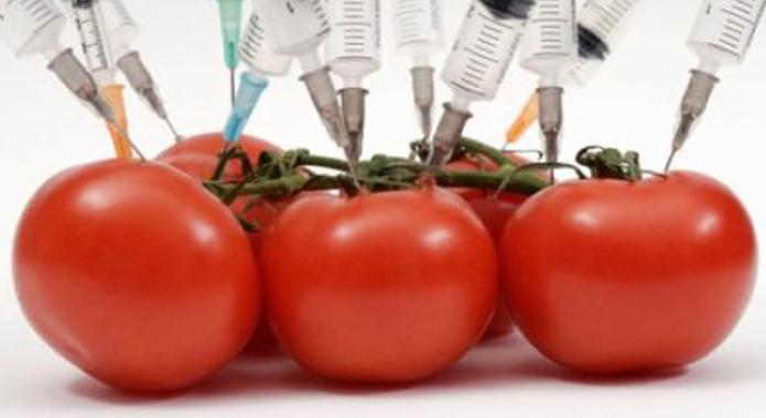 Landareak Genetikoki Manipulatzen